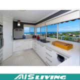 電気機器(AIS-K223)が付いている現代的な食器棚の家具