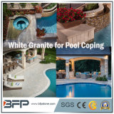 Honed Granite Swimming Pool Cooping / Fountain / Pool Surrounding for Exterior