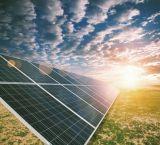 Módulo poli do painel solar do melhor preço mono 100W 150W 200W 250W 300W 12V 24V 36V 48V