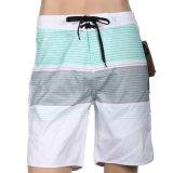 Vender por atacado todo o Beachwear dos Shorts da placa de ressaca da impressão