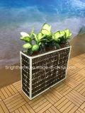 Gesponnener Rattan-Art-Blumen-Potenziometer