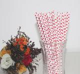 Cannuccia di carta a gettare ecologica variopinta del PUNTINO di Polka per la decorazione del partito