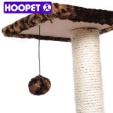 2016 kleiner Cat Tree mit Hanging Ball