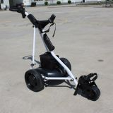 Push Handle (DG12150-B)のセリウムCertification 3 Wheel Electric Push Golf Trolley