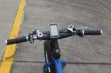 36V 250Wのブラシレスの脂肪質のタイヤ山の電気自転車