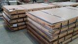 Het Blad van het roestvrij staal voor Elektrische Ketel
