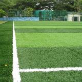 Campo artificial de /Soccer del balompié de los jugadores del césped/del fútbol Field/7