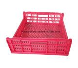 Прессформа впрыски коробки хранения хорошего качества пластичная