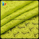 다채로운 연약한 직물 레이스 내복을%s 탄력 있는 염색된 형식 레이스