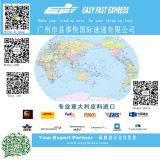 Remetente de frete chinês que envia os bens a no mundo inteiro