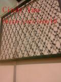 Колючая проволока покрынная PVC гальванизированная Concertina (XA-RW004)