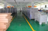 Professioneller programmierbarer Klimaprüfungs-Raum-Hersteller in China