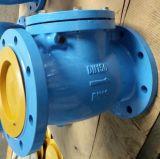 BS5153 de Klep van de Controle van de Schommeling van het Gietijzer Pn16 met Uitstekende kwaliteit