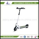 安く、良い品質の中国の製造者の大きさ2の車輪の高品質Ebike