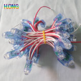 9mm LED Exposure String Light Advertizing Light