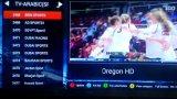 Doos van TV van de verrassing omvat de Androïde 1000 Vrije Arabische Kanalen HD