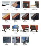 普及した公共の家具の講堂の椅子