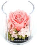 최상 아크릴 둥근 꽃 상자