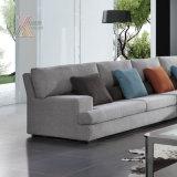 Il sofà del tessuto del salone ha impostato (6101)