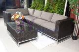 Sofá ocasional do Rattan do PE da mobília do jardim Home