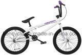 20 des Zoll-BMX Fahrrad Freistil-des Fahrrad-25/9 mit Kreiselkompaß