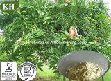 Высокое качество Mangiferin, выдержка листьев мангоа, номер CAS.: 4773-96-0
