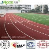 Het Atletische Spoor van de Renbaan van Pu voor het Stadion van het Spoor en van het Gebied