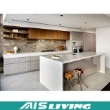 Мебель кухонных шкафов кухни трасучки фабрики Foshan белая (AIS-K379)