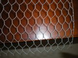 Горячее Salepvc Coated/Galvanized Box 2*1*1/Gabion Basket Professional Factory