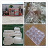 Macchina di formatura di plastica di imballaggio per alimenti dalla Cina