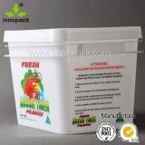 Cubeta plástica da fruta da cubeta do retângulo do produto comestível de 10 litros com tampa e punho