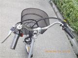 36V 250W Trike elétrico de compra para o homem idoso