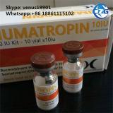 Músculo do Gh Somatropin 10iu 191AA da hormona que constrói o bom efeito