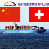 Transporte da carga do mar (FCL/LCL) de China a Switzerland