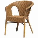 Cadeira de lazer de bastão de jardim (BC-07009S)