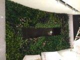 Piante e fiori artificiali della parete verde Gu-Mx-Green-Wall0010