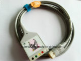 의학 12pin Aha Snap&Clip 5 트렁크 ECG 케이블