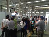 Производственная линия вертикального автоматического плоского давления изолируя стеклянная