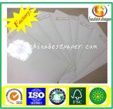 60g Silicone Release Carta-per Adhesive Paper