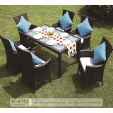 Vector de cena de los muebles del patio del jardín nuevos y conjunto de interior al aire libre de mimbre de la silla