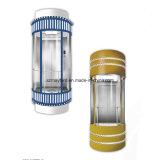 Maschine Roomless kommerzielles panoramisches Glashöhenruder für die Besichtigung