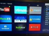 Ipremium Hybrid DVB-S2 + DVB-T2 + IPTV Set Top Box avec plate-forme Mickyhop
