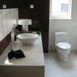Chambre préfabriquée de conteneur de Deux-Histoires de luxe pour l'hôtel/appartement