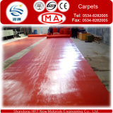 200-400G/M2 Waterproofing Outside Carpets für Exhibition und Wedding