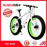 Bicicleta gorda de alumínio gorda da bicicleta de montanha do pneumático
