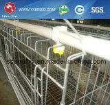 matériel à plusieurs niveaux de ferme avicole de cage de couche d'A à vendre