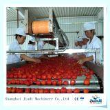 Ketchup de tomate que faz a máquina