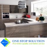 Armadi da cucina grigi della mobilia della casa di rivestimento dell'impiallacciatura di nuovo disegno (ZY 1064)