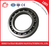 Groove profundo Ball Bearing (6021ZZ RS OPEN)