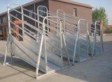 Pannelli pre galvanizzati del bestiame (YL-J008)